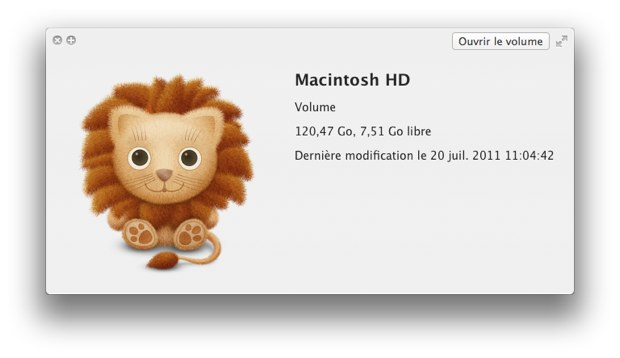 lion-install